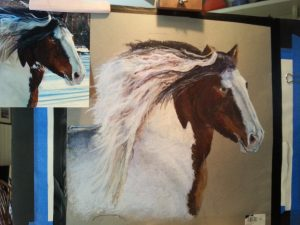 pet portrait of Garret, gypsy vanner horse pastel with original photo