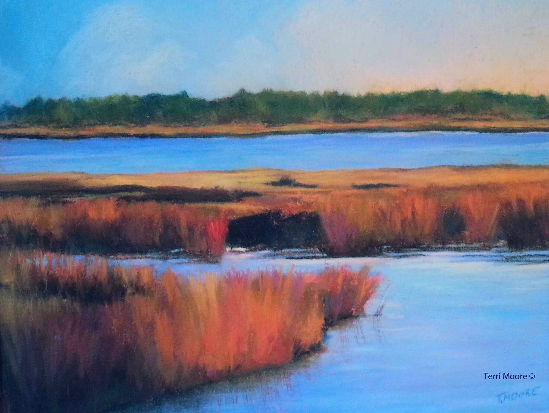 landscape rivermarsh